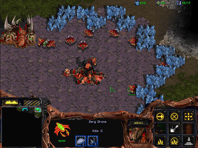 Free PC Games - Starcraft Zerg