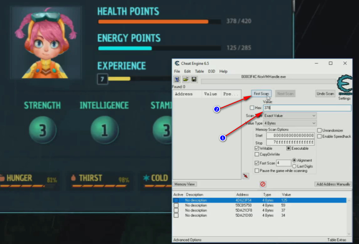 Ankora Cheat Engine Launches life points search